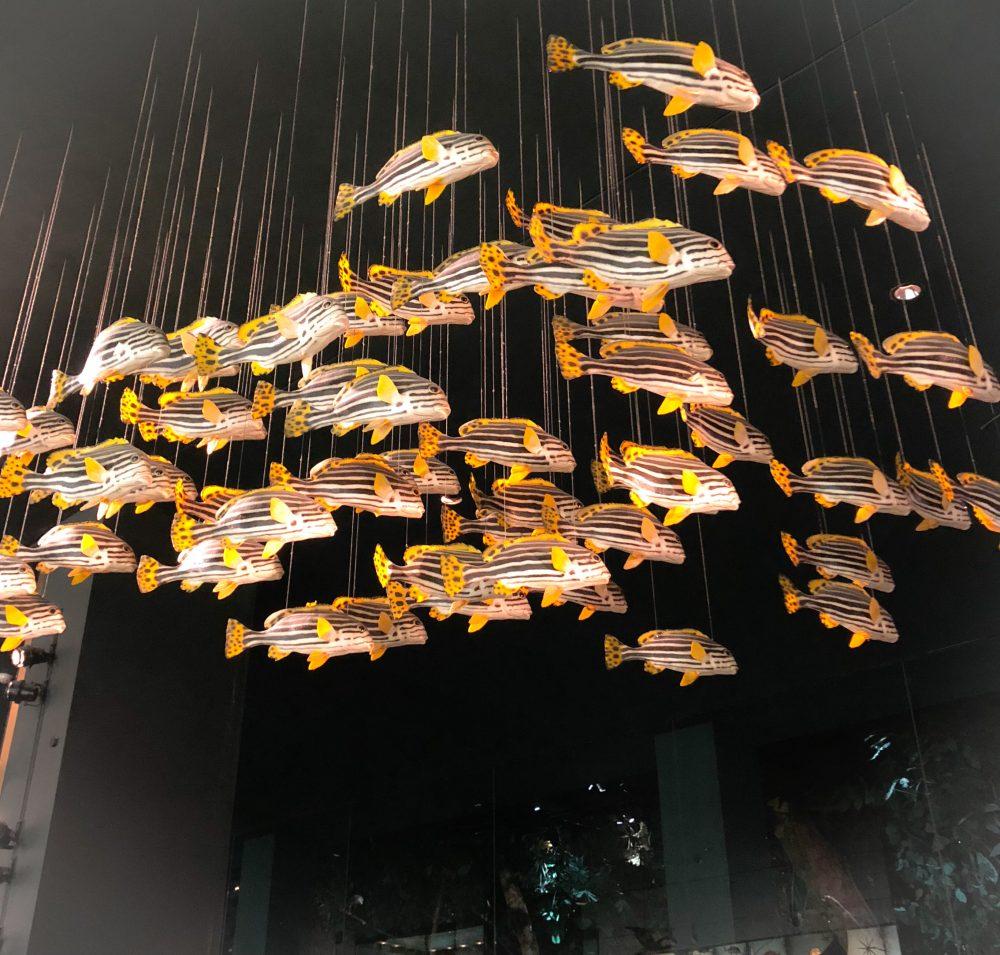 Im Naturkundemuseum: fliegende Fische